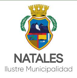 arriendo pantallas led municipalidad de natales