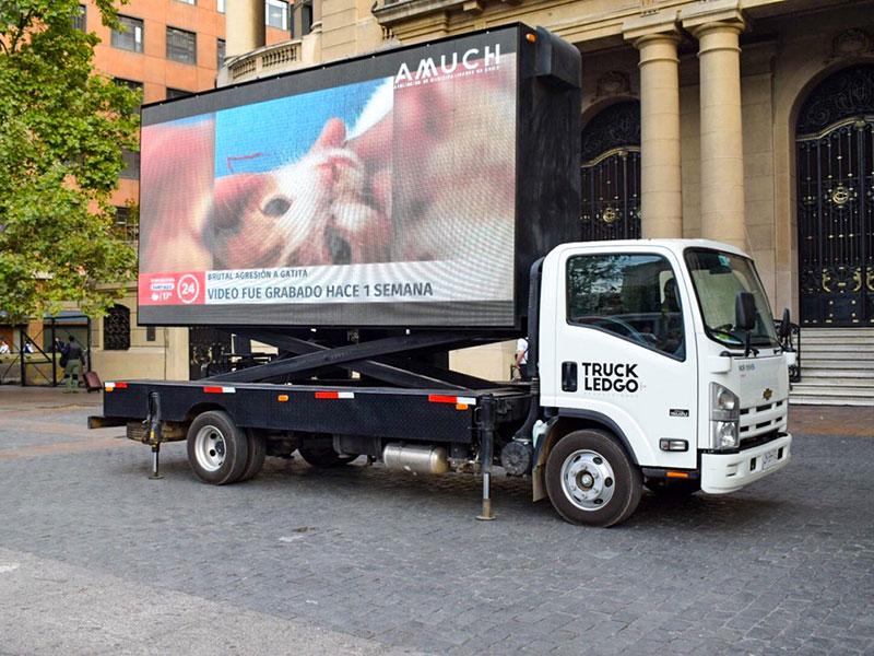 arriendo camion led tenencia mascotas 6