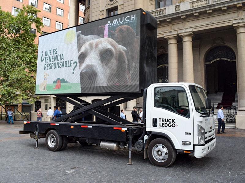 Programa De Difusión, Ley De Tenencia Responsable De Mascotas